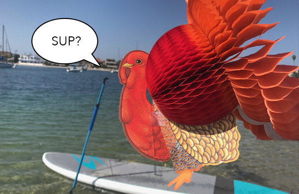 Tom the Turkey Stand Up Paddling